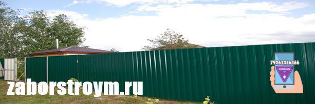 Забор из профилированного листа RAL 6005